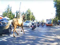 Paard achtervolgt motorrijders in Rusland