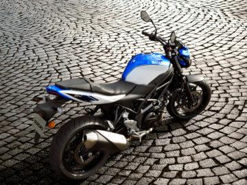 Suzuki Motoren 2019